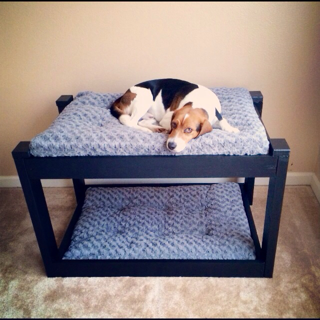 Dog bunk beds home sweet life for Pet bunk bed gallery